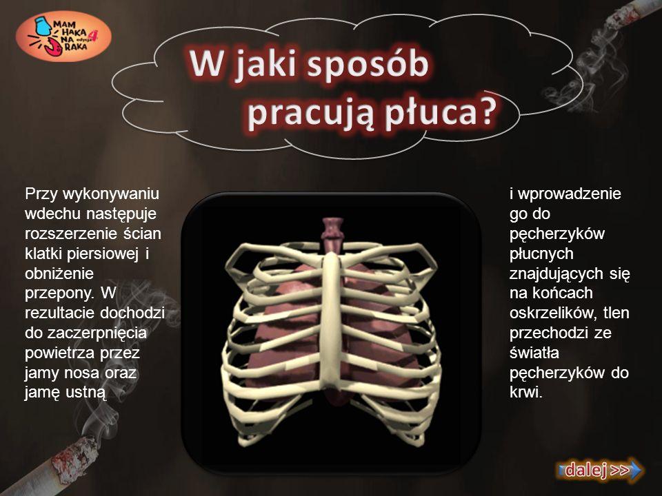 Biopsja może być przeprowadzana w celu dokonania pobrania wycinka masy guza zlokalizowanego w płucu lub z błony opłucnej pokrywającej płuco, jeśli jest ona pogrubiała i zachodzi podejrzenie wytworzenia się tam guza nowotworowego.