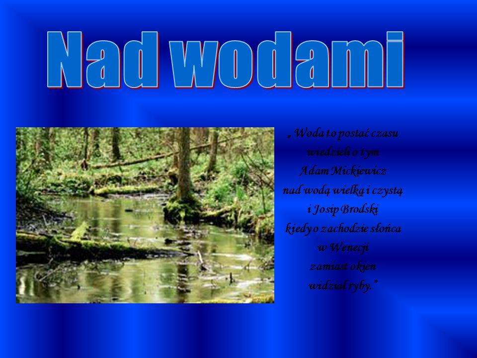 Woda to postać czasu wiedzieli o tym Adam Mickiewicz nad wodą wielką i czystą i Josip Brodski kiedy o zachodzie słońca w Wenecji zamiast okien widział ryby.