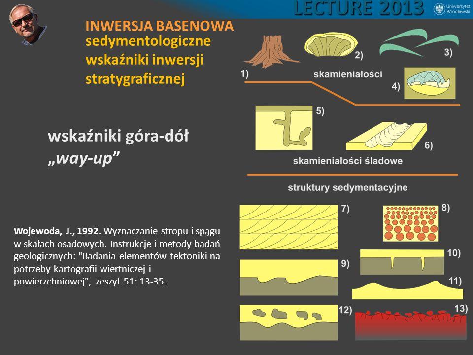 Wojewoda, J., 1992. Wyznaczanie stropu i spągu w skałach osadowych. Instrukcje i metody badań geologicznych: