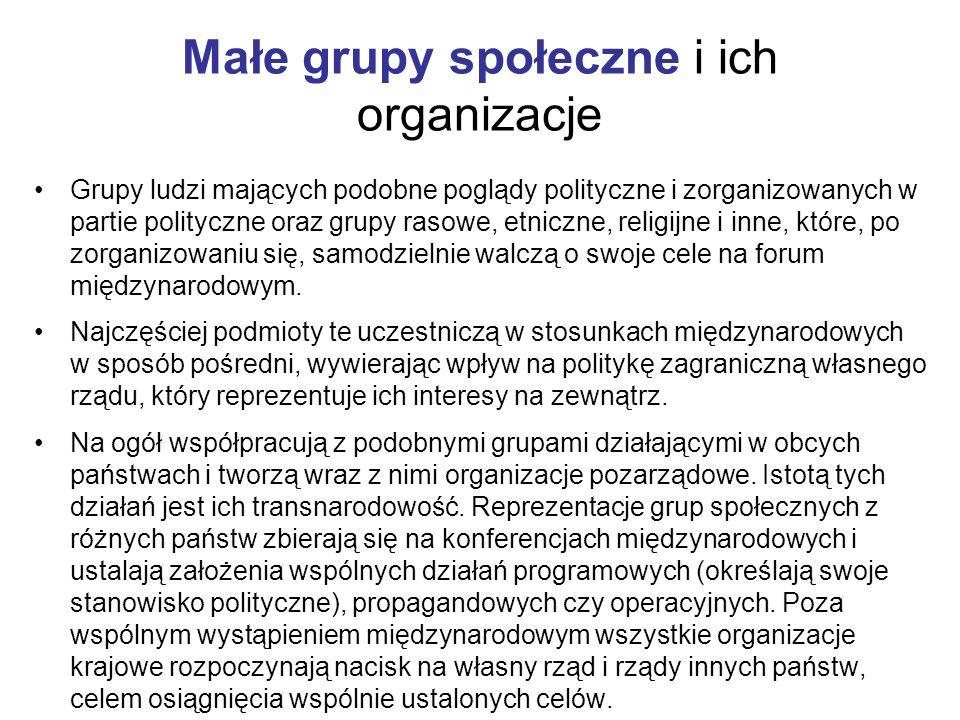 Małe grupy społeczne i ich organizacje Grupy ludzi mających podobne poglądy polityczne i zorganizowanych w partie polityczne oraz grupy rasowe, etnicz