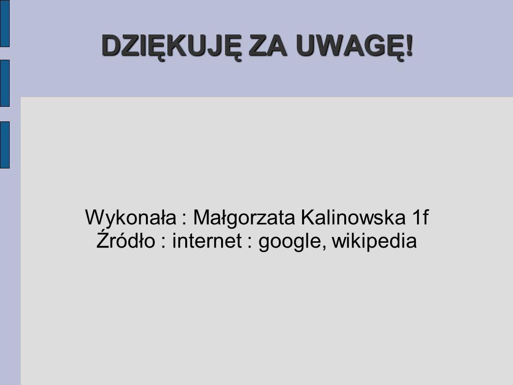 DZIĘKUJĘ ZA UWAGĘ! Wykonała : Małgorzata Kalinowska 1f Źródło : internet : google, wikipedia