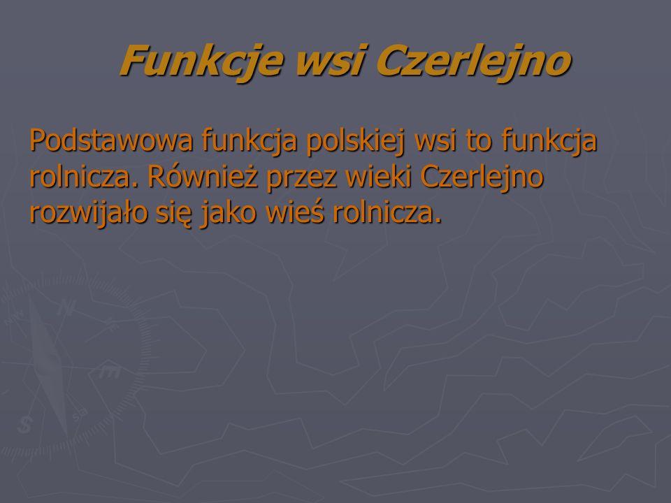 Funkcje wsi Czerlejno Podstawowa funkcja polskiej wsi to funkcja rolnicza.