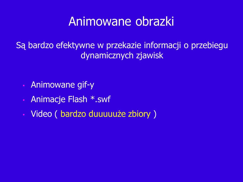 Animowane obrazki Animowane gif-y Animacje Flash *.swf Video ( bardzo duuuuuże zbiory ) Są bardzo efektywne w przekazie informacji o przebiegu dynamicznych zjawisk