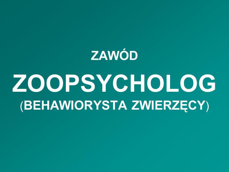 ZOOPSYCHOLOG ( BEHAWIORYSTA ZWIERZĘCY ) ZAWÓD