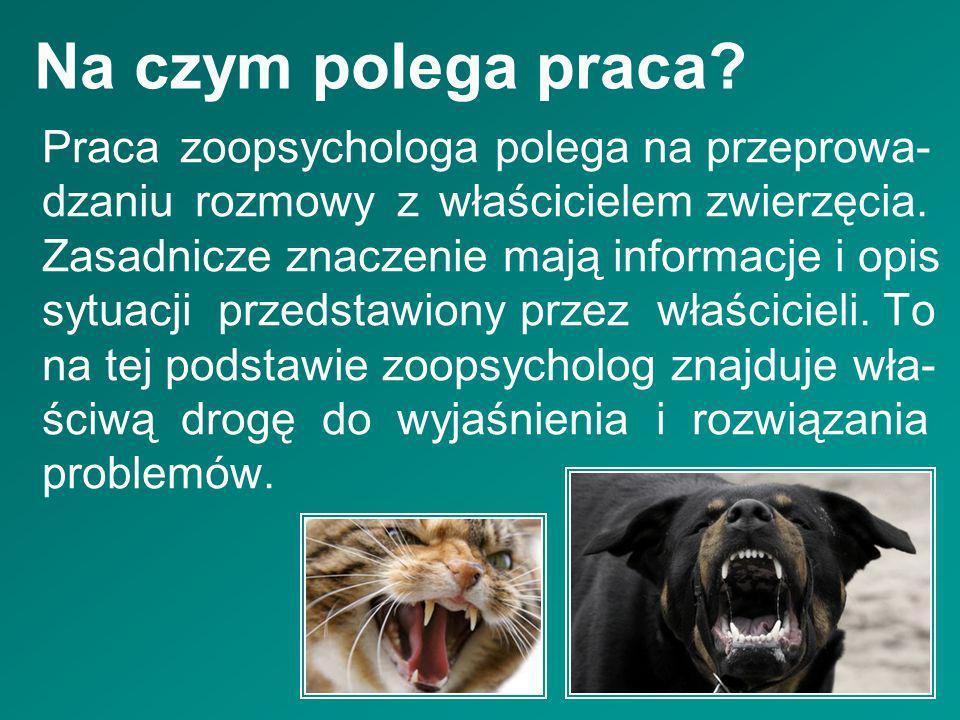 Na czym polega praca? Praca zoopsychologa polega na przeprowa- dzaniu rozmowy z właścicielem zwierzęcia. Zasadnicze znaczenie mają informacje i opis s