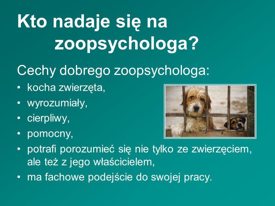 Kto nadaje się na zoopsychologa? Cechy dobrego zoopsychologa: kocha zwierzęta, wyrozumiały, cierpliwy, pomocny, potrafi porozumieć się nie tylko ze zw