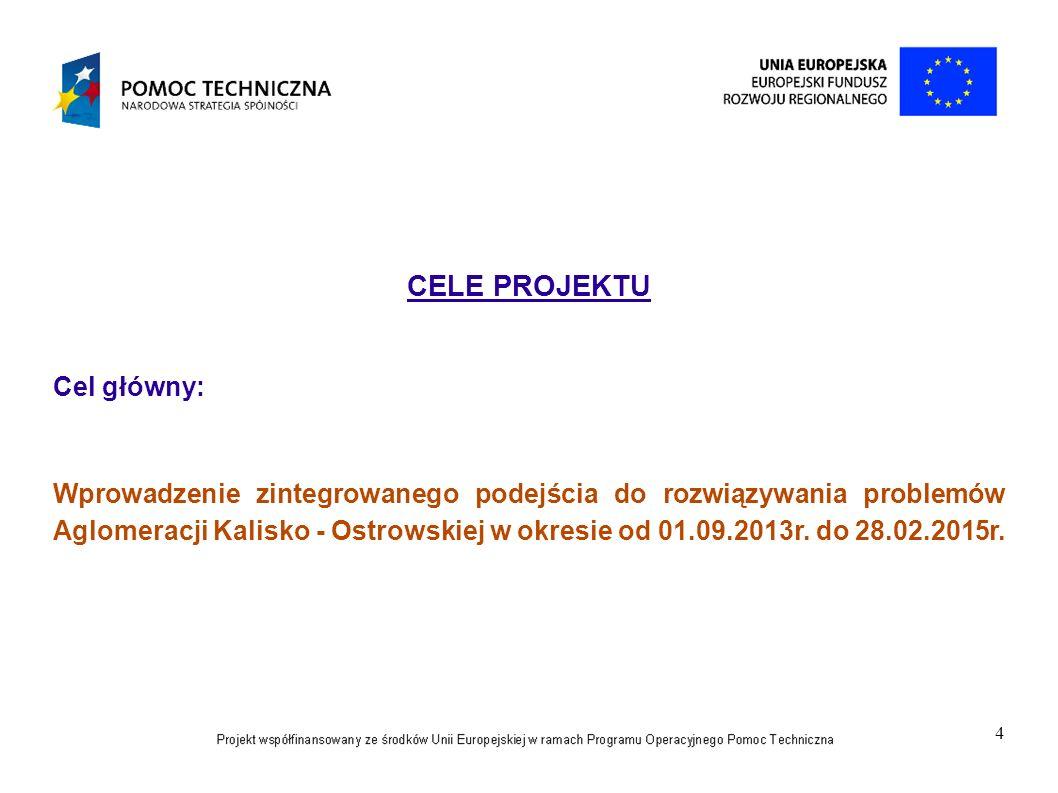 4 CELE PROJEKTU Cel główny: Wprowadzenie zintegrowanego podejścia do rozwiązywania problemów Aglomeracji Kalisko - Ostrowskiej w okresie od 01.09.2013