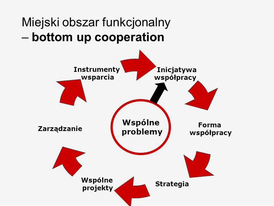 Miejski obszar funkcjonalny – bottom up cooperation Inicjatywa współpracy Forma współpracy Strategia Wspólne projekty Zarządzanie Instrumenty wsparcia