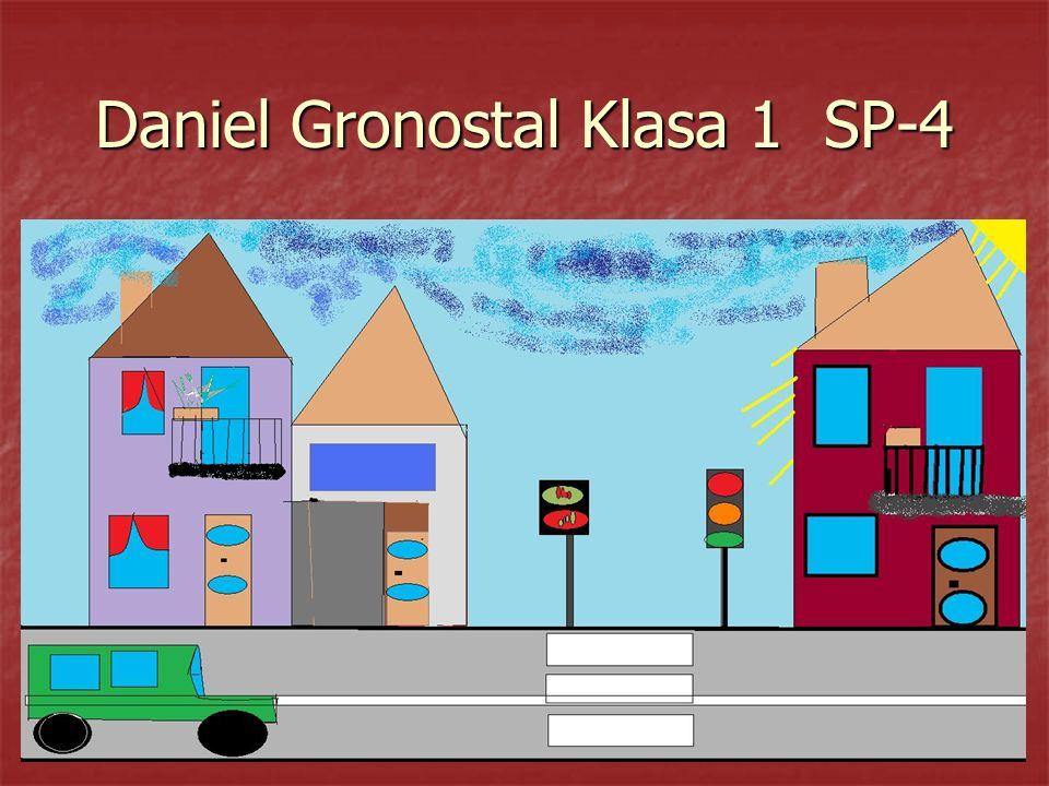 Daniel Gronostal Klasa 1 SP-4