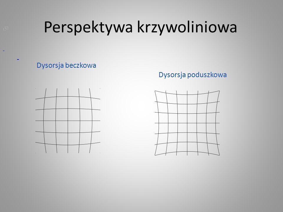 Perspektywa krzywoliniowa Dysorsja beczkowa Dysorsja poduszkowa