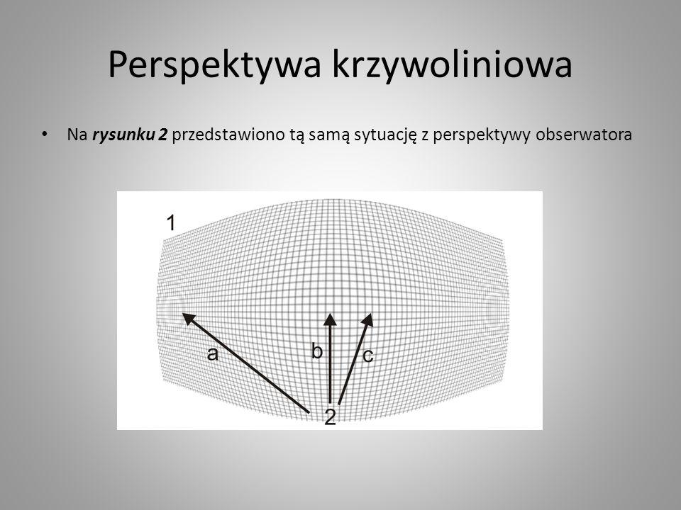 Perspektywa krzywoliniowa Na rysunku 2 przedstawiono tą samą sytuację z perspektywy obserwatora