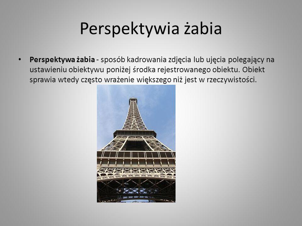 Perspektywia żabia Perspektywa żabia - sposób kadrowania zdjęcia lub ujęcia polegający na ustawieniu obiektywu poniżej środka rejestrowanego obiektu.