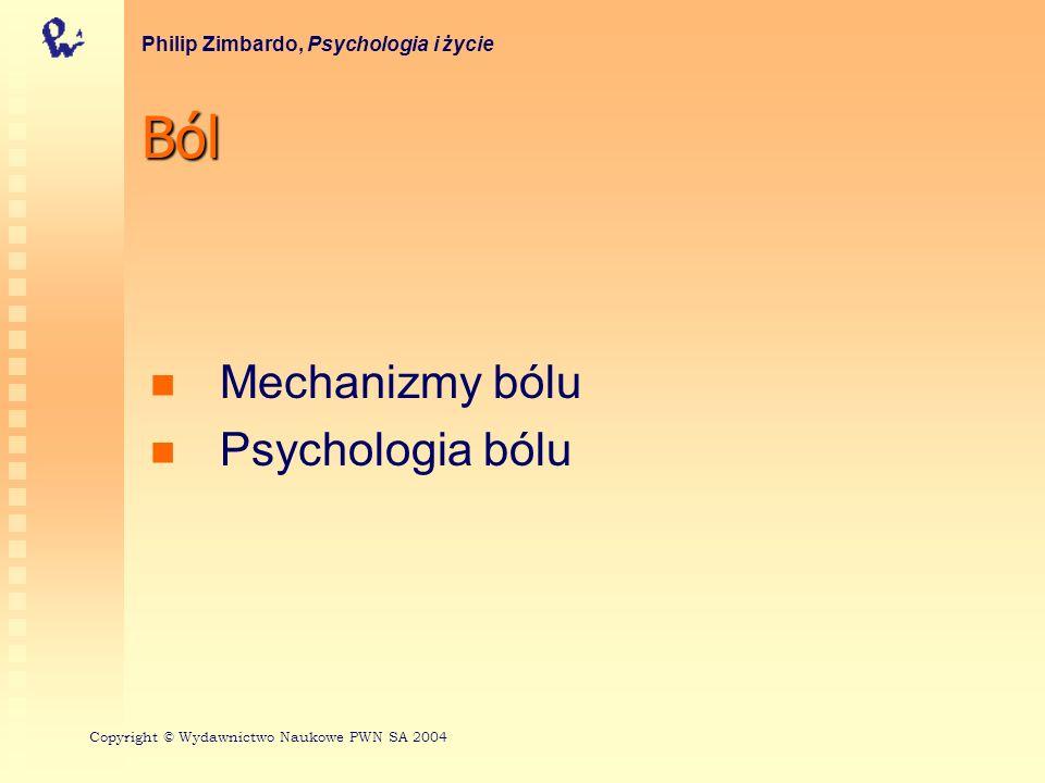 Ból Mechanizmy bólu Psychologia bólu Philip Zimbardo, Psychologia i życie Copyright © Wydawnictwo Naukowe PWN SA 2004