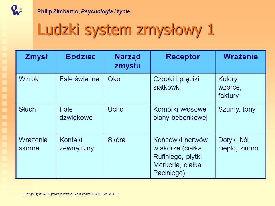 Ludzki system zmysłowy 1 Philip Zimbardo, Psychologia i życie ZmysłBodziecNarząd zmysłu ReceptorWrażenie WzrokFale świetlneOkoCzopki i pręciki siatków