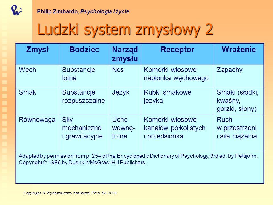 Ludzki system zmysłowy 2 Philip Zimbardo, Psychologia i życie ZmysłBodziecNarząd zmysłu ReceptorWrażenie WęchSubstancje lotne NosKomórki włosowe nabło