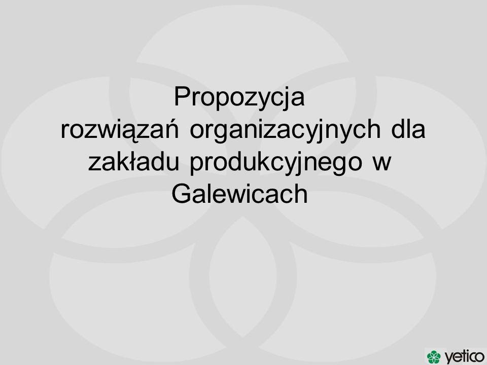 Propozycja rozwiązań organizacyjnych dla zakładu produkcyjnego w Galewicach