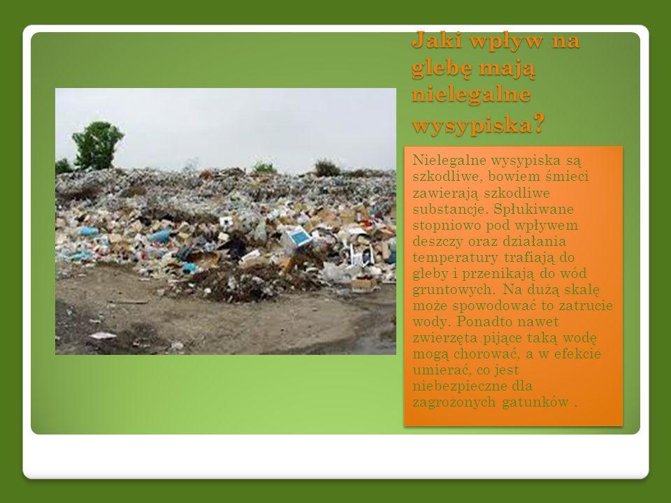 Jaki wpływ na glebę mają nielegalne wysypiska ? Nielegalne wysypiska są szkodliwe, bowiem śmieci zawierają szkodliwe substancje. Spłukiwane stopniowo