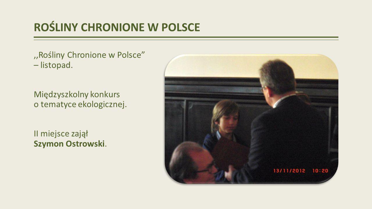 ROŚLINY CHRONIONE W POLSCE,,Rośliny Chronione w Polsce – listopad.