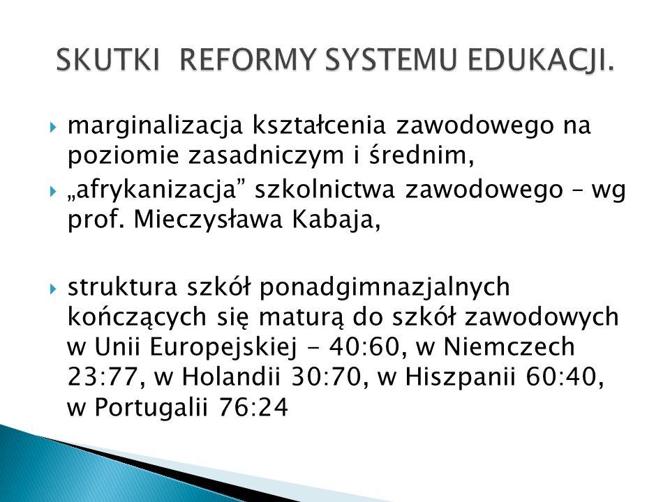 marginalizacja kształcenia zawodowego na poziomie zasadniczym i średnim, afrykanizacja szkolnictwa zawodowego – wg prof. Mieczysława Kabaja, struktura