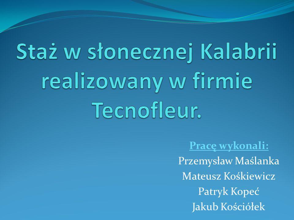 Pracę wykonali: Przemysław Maślanka Mateusz Kośkiewicz Patryk Kopeć Jakub Kościółek