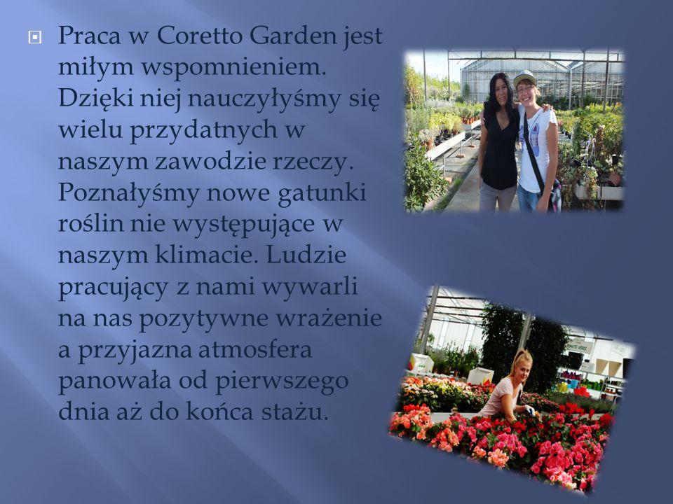 Praca w Coretto Garden jest miłym wspomnieniem. Dzięki niej nauczyłyśmy się wielu przydatnych w naszym zawodzie rzeczy. Poznałyśmy nowe gatunki roślin