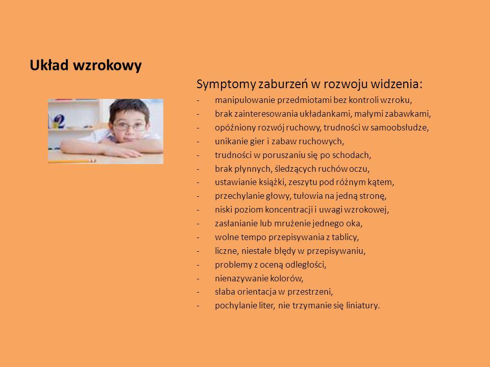 Układ wzrokowy Symptomy zaburzeń w rozwoju widzenia: -manipulowanie przedmiotami bez kontroli wzroku, -brak zainteresowania układankami, małymi zabawk