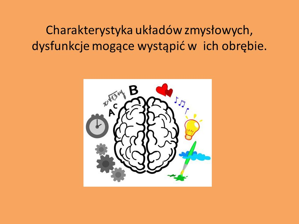 Charakterystyka układów zmysłowych, dysfunkcje mogące wystąpić w ich obrębie.
