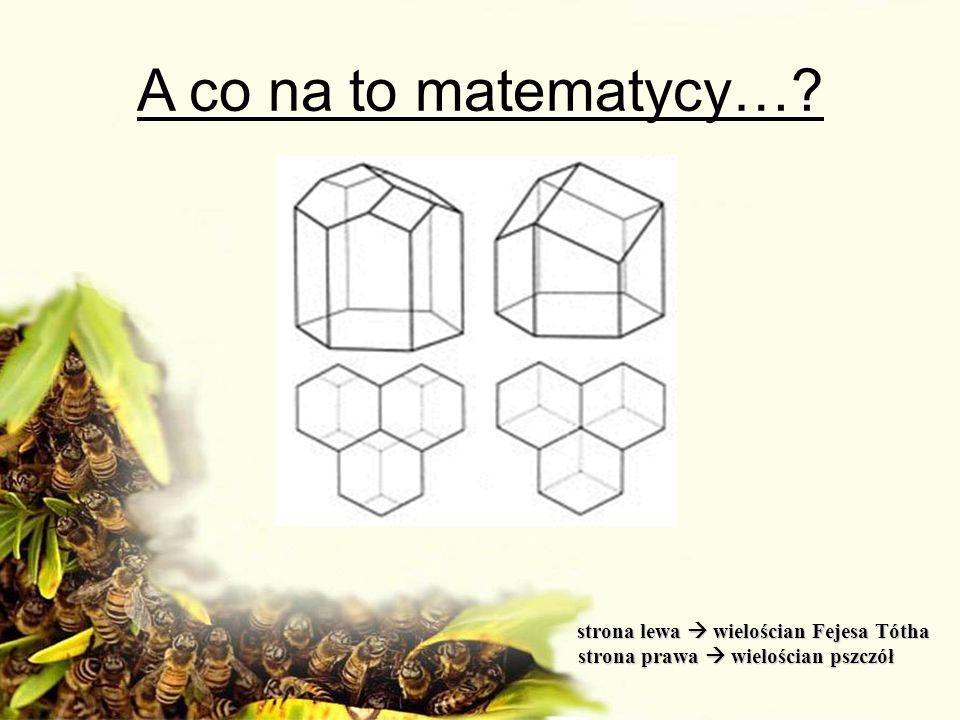 strona lewa wielościan Fejesa Tótha strona lewa wielościan Fejesa Tótha strona prawa wielościan pszczół strona prawa wielościan pszczół A co na to mat