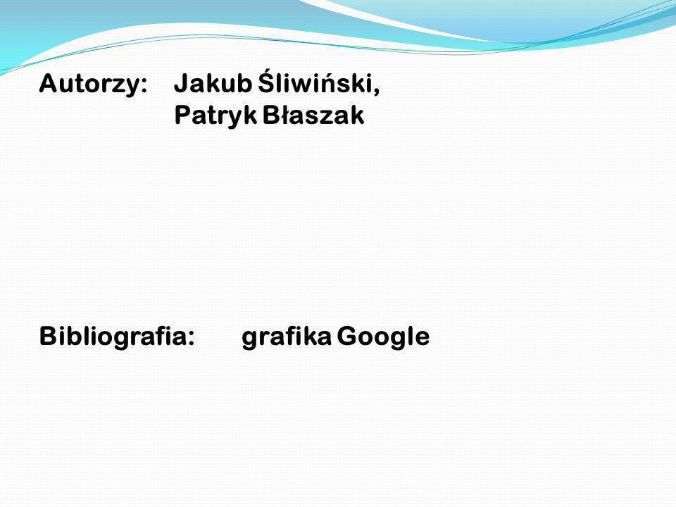 Autorzy: Jakub Ś liwi ń ski, Patryk B ł aszak Bibliografia: grafika Google