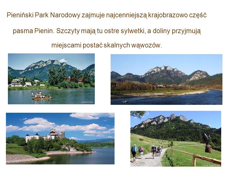 Pieniński Park Narodowy zajmuje najcenniejszą krajobrazowo część pasma Pienin. Szczyty mają tu ostre sylwetki, a doliny przyjmują miejscami postać ska