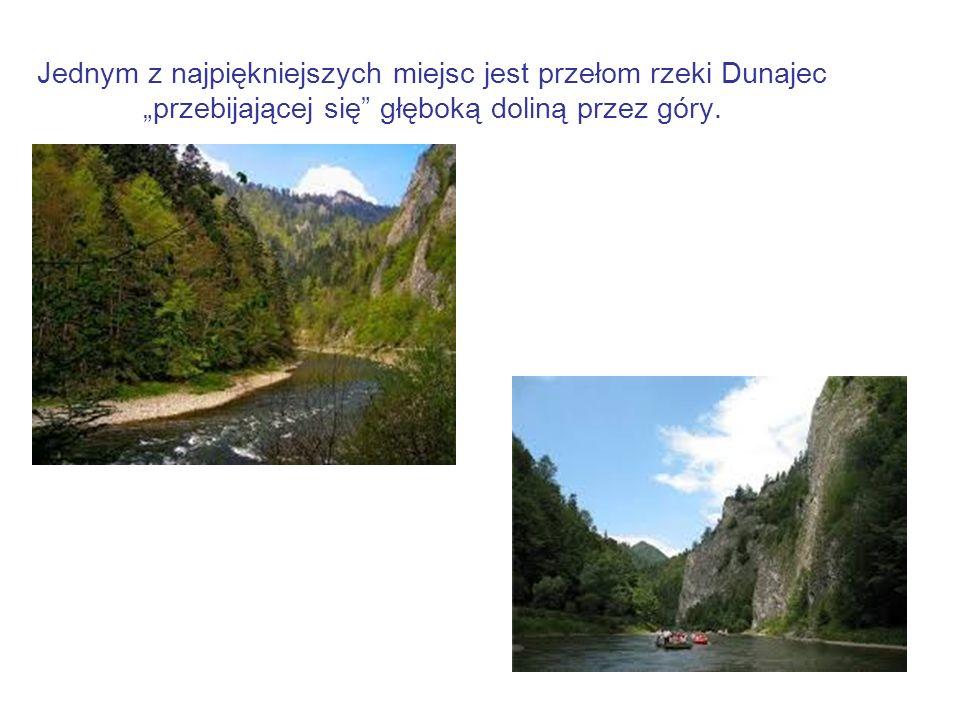 Jednym z najpiękniejszych miejsc jest przełom rzeki Dunajec przebijającej się głęboką doliną przez góry.