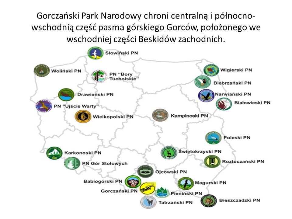 Gorczański Park Narodowy chroni centralną i północno- wschodnią część pasma górskiego Gorców, położonego we wschodniej części Beskidów zachodnich.