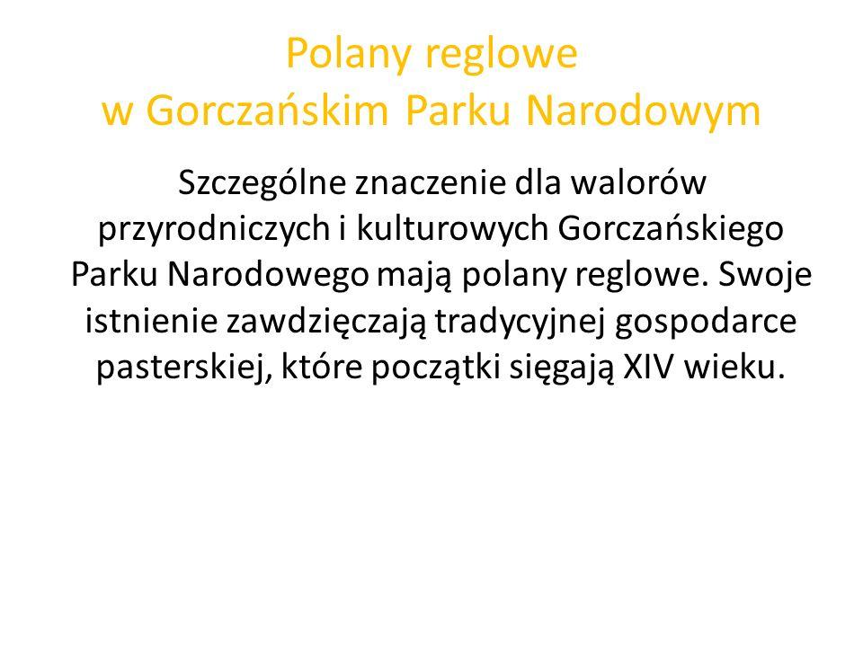 Polany reglowe w Gorczańskim Parku Narodowym Szczególne znaczenie dla walorów przyrodniczych i kulturowych Gorczańskiego Parku Narodowego mają polany