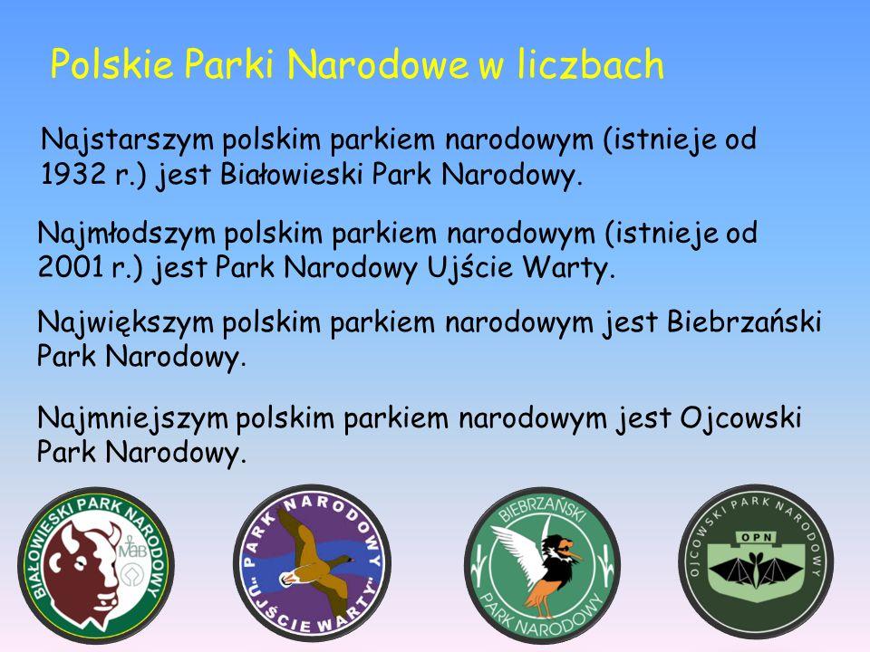 Najstarszym polskim parkiem narodowym (istnieje od 1932 r.) jest Białowieski Park Narodowy. Najmłodszym polskim parkiem narodowym (istnieje od 2001 r.