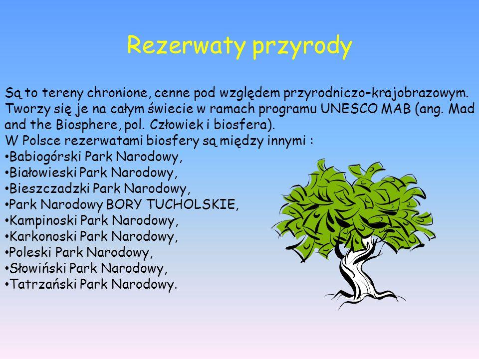 Rezerwaty przyrody Są to tereny chronione, cenne pod względem przyrodniczo–krajobrazowym. Tworzy się je na całym świecie w ramach programu UNESCO MAB