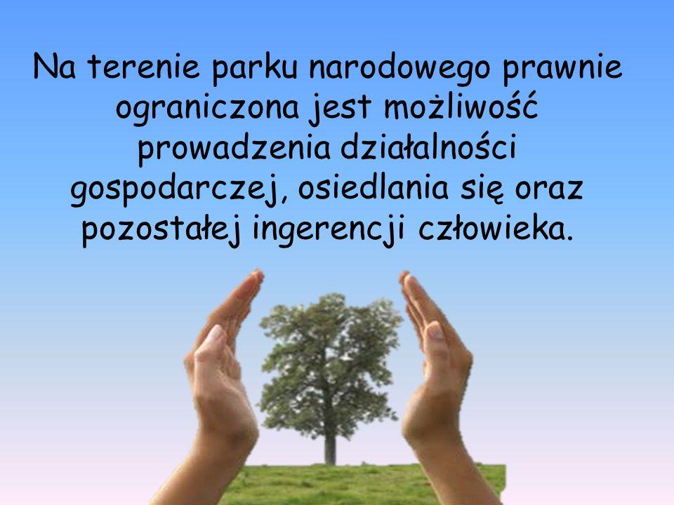 Na terenie parku narodowego prawnie ograniczona jest możliwość prowadzenia działalności gospodarczej, osiedlania się oraz pozostałej ingerencji człowi