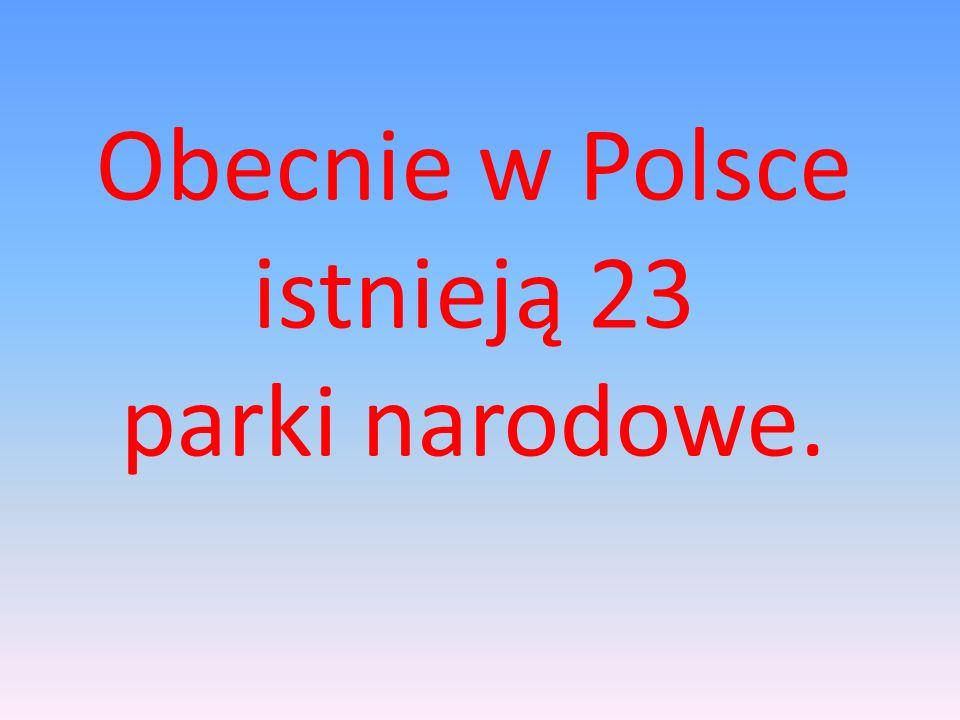 Obecnie w Polsce istnieją 23 parki narodowe.