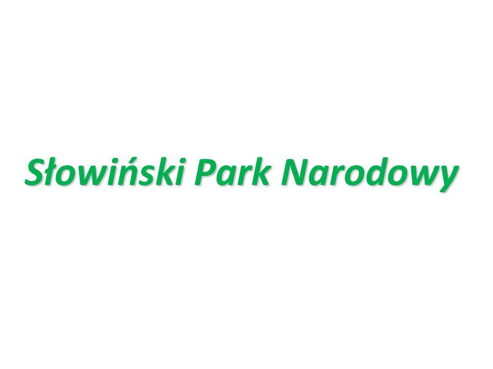 Słowiński Park Narodowy jest jednym z 23 parków narodowych w Polsce i jednym z dwóch parków nadmorskich.