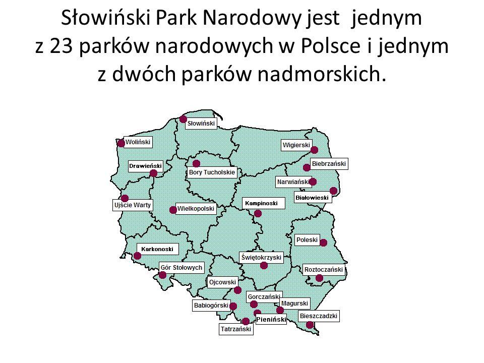 Jest on położony na środkowym wybrzeżu, pomiędzy Łebą a Rowami.