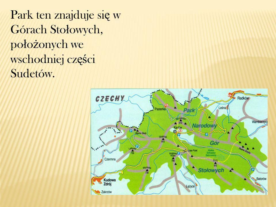 Najwy ż szym wzniesieniem Gór Sto ł owych jest Szczeliniec Wielki (919 m n.p.m.) i to on w ł a ś nie stanowi symbol parku.