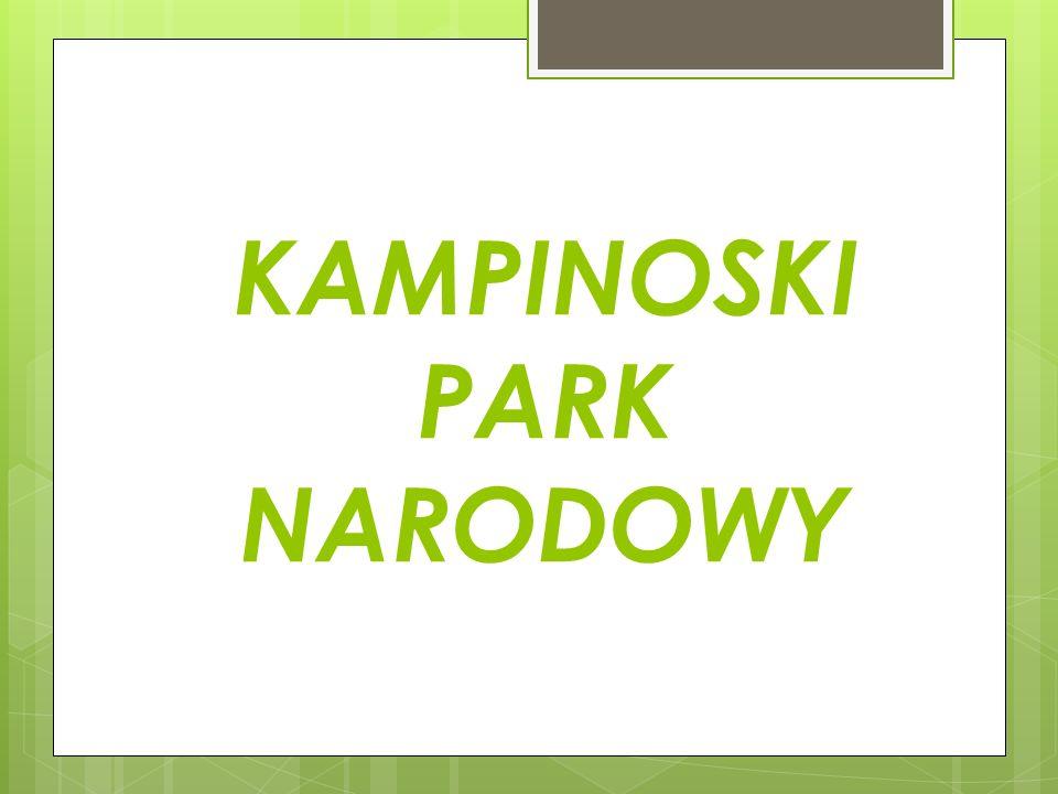 Kampinoski Park Narodowy obejmuje tereny Puszczy Kampinoskiej ( pozostałości po Puszczy Mazowieckiej) w pradolinie Wisły, w zachodniej części Kotliny Warszawskiej.