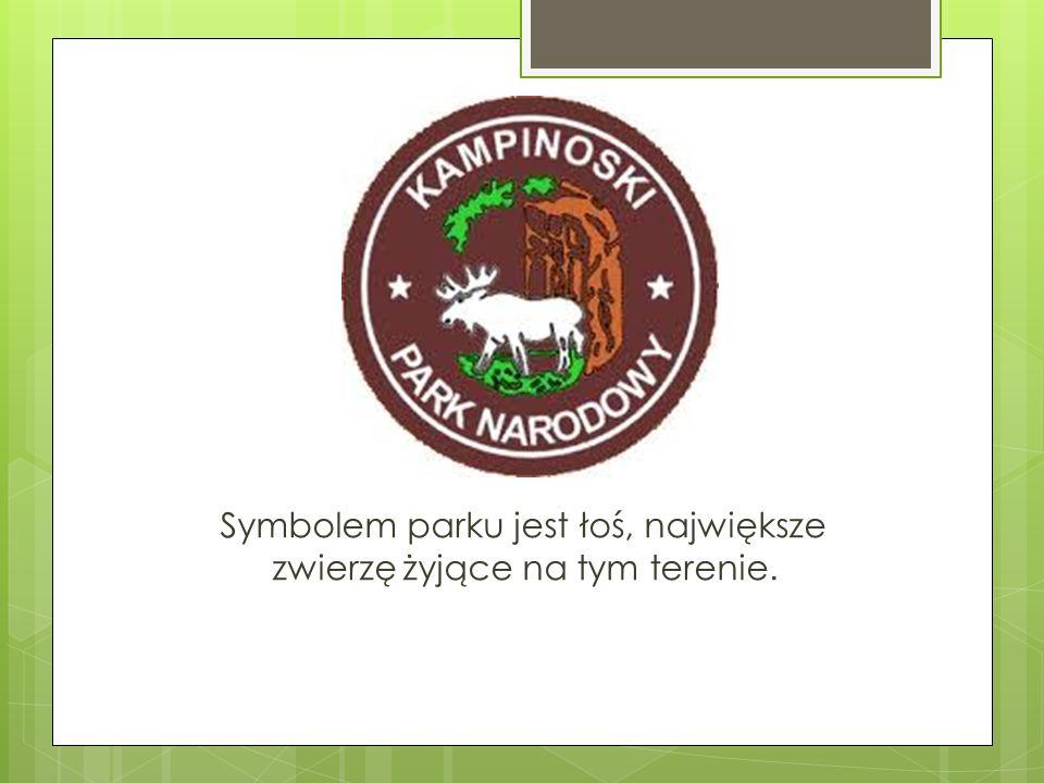 Symbolem parku jest łoś, największe zwierzę żyjące na tym terenie.
