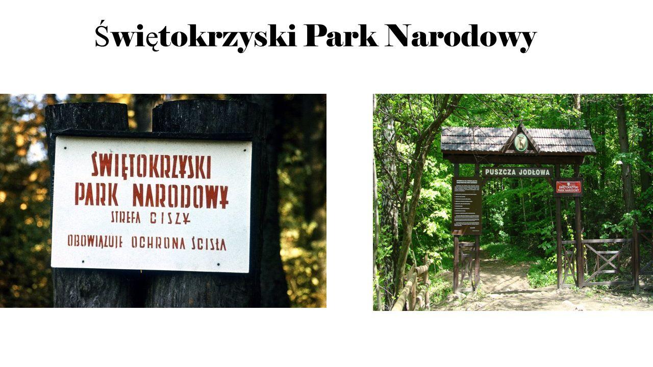 Ś wi ę tokrzyski Park Narodowy