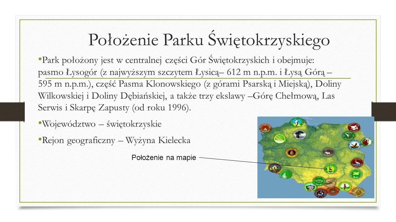 Położenie Parku Świętokrzyskiego Park położony jest w centralnej części Gór Świętokrzyskich i obejmuje: pasmo Łysogór (z najwyższym szczytem Łysicą– 6
