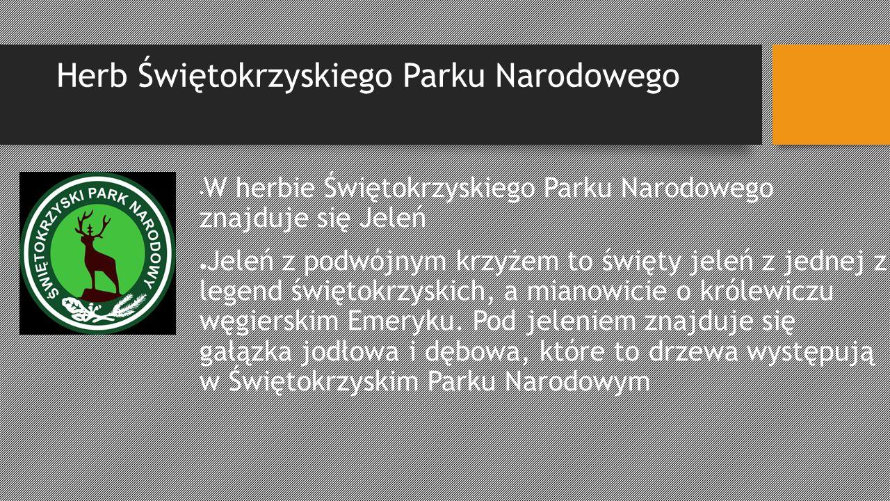 Herb Świętokrzyskiego Parku Narodowego W herbie Świętokrzyskiego Parku Narodowego znajduje się Jeleń Jeleń z podwójnym krzyżem to święty jeleń z jedne