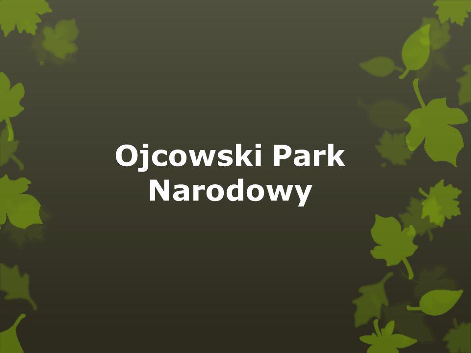 Jest to najmniejszy polski park narodowy.