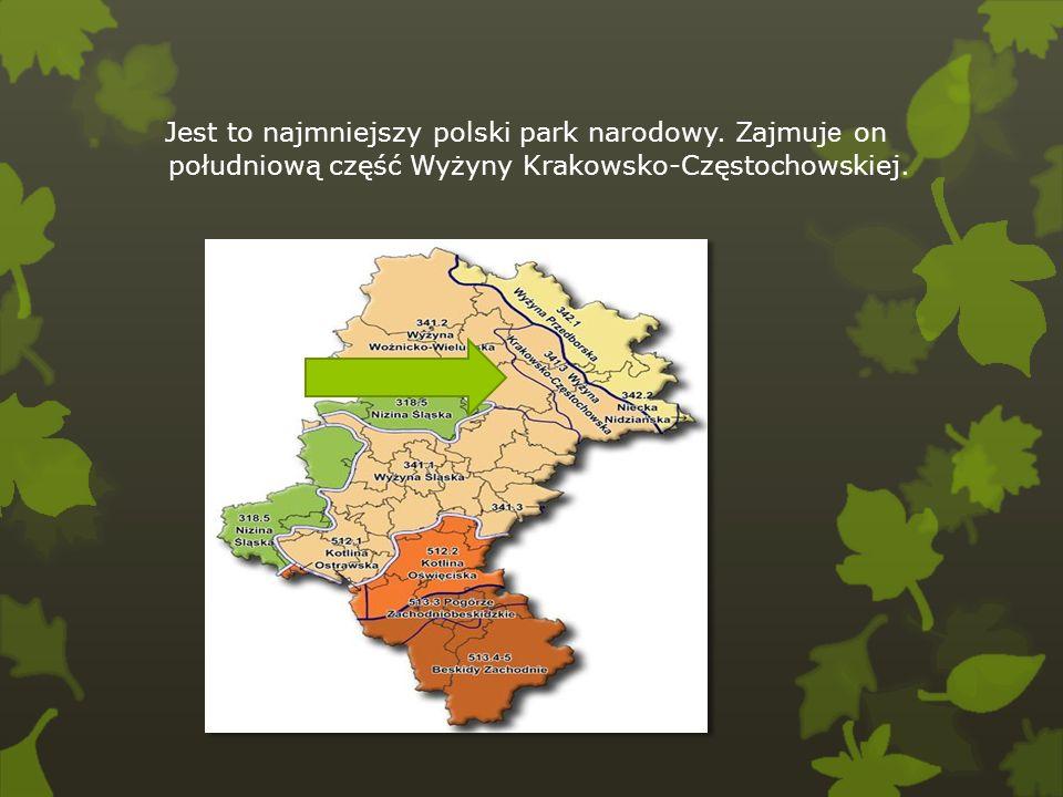 Jest to najmniejszy polski park narodowy. Zajmuj e on południową część Wyżyny Krakowsko-Częstochowskiej.