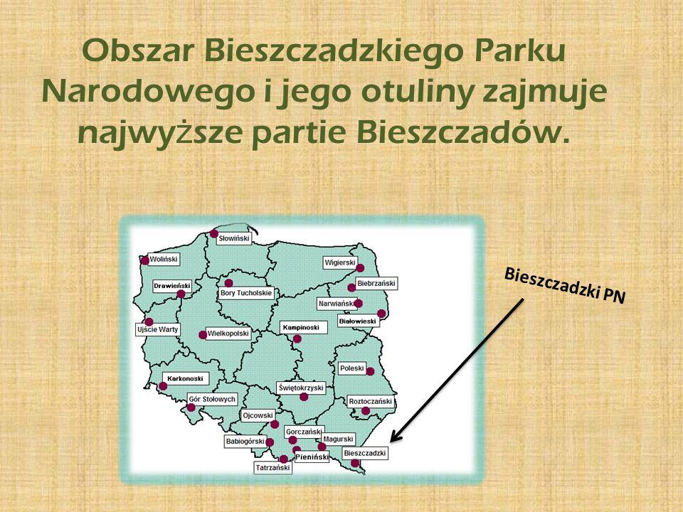 Obszar Bieszczadzkiego Parku Narodowego i jego otuliny zajmuje najwy ż sze partie Bieszczadów.