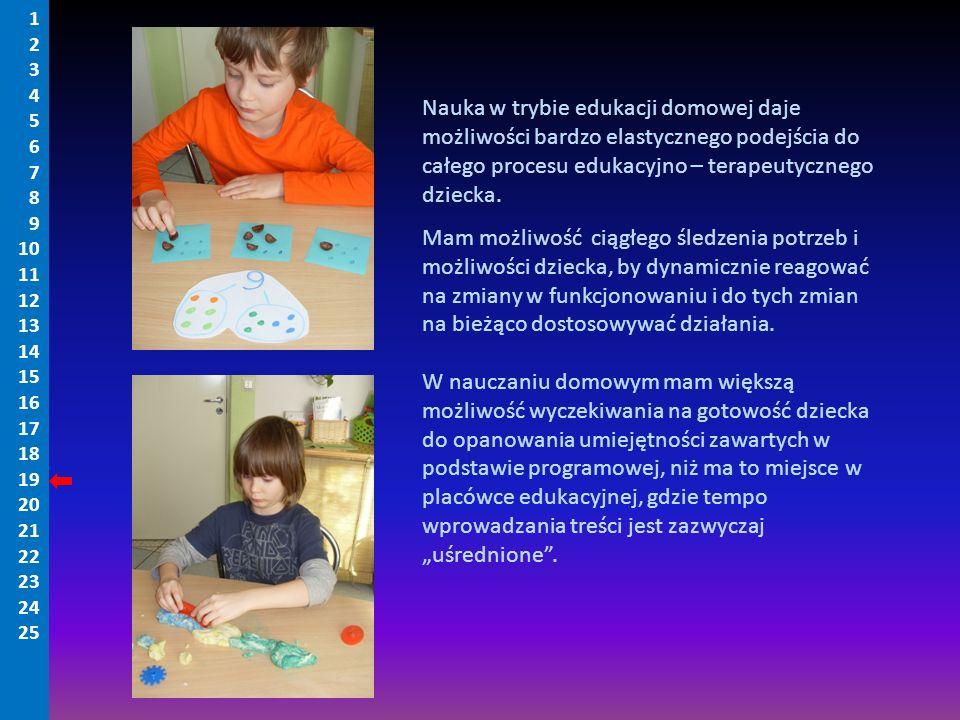 Nauka w trybie edukacji domowej daje możliwości bardzo elastycznego podejścia do całego procesu edukacyjno – terapeutycznego dziecka. Mam możliwość ci