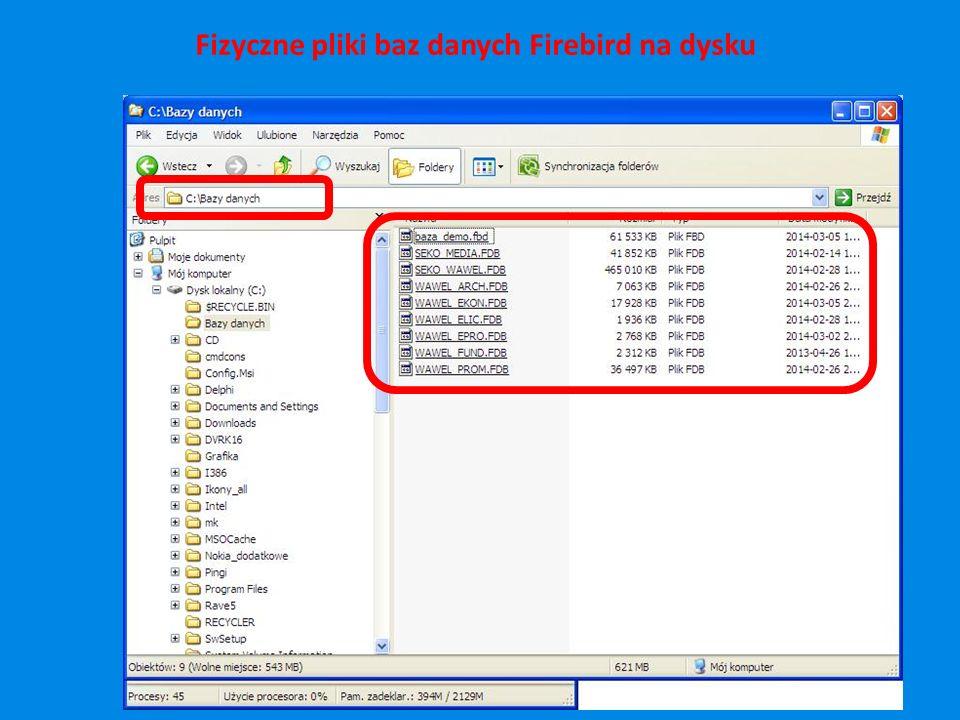 Fizyczne pliki baz danych Firebird na dysku